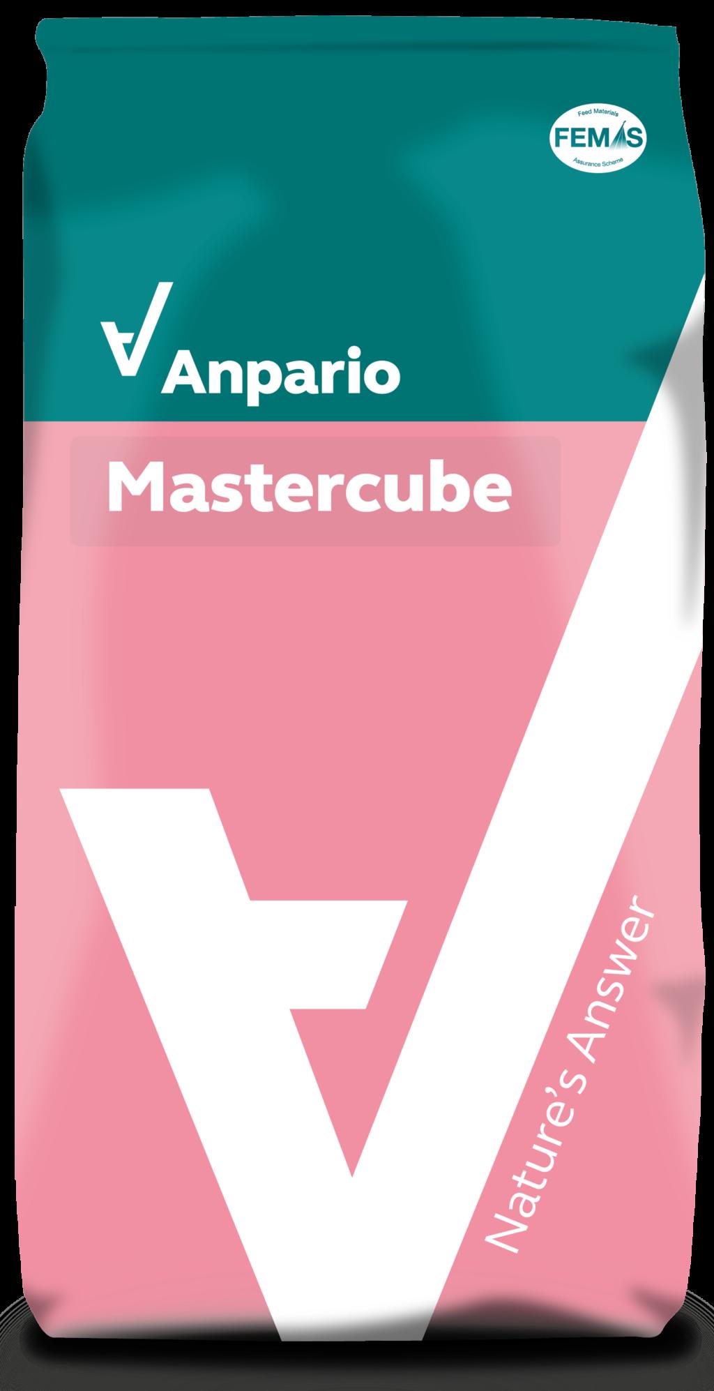 Mastercube 速型