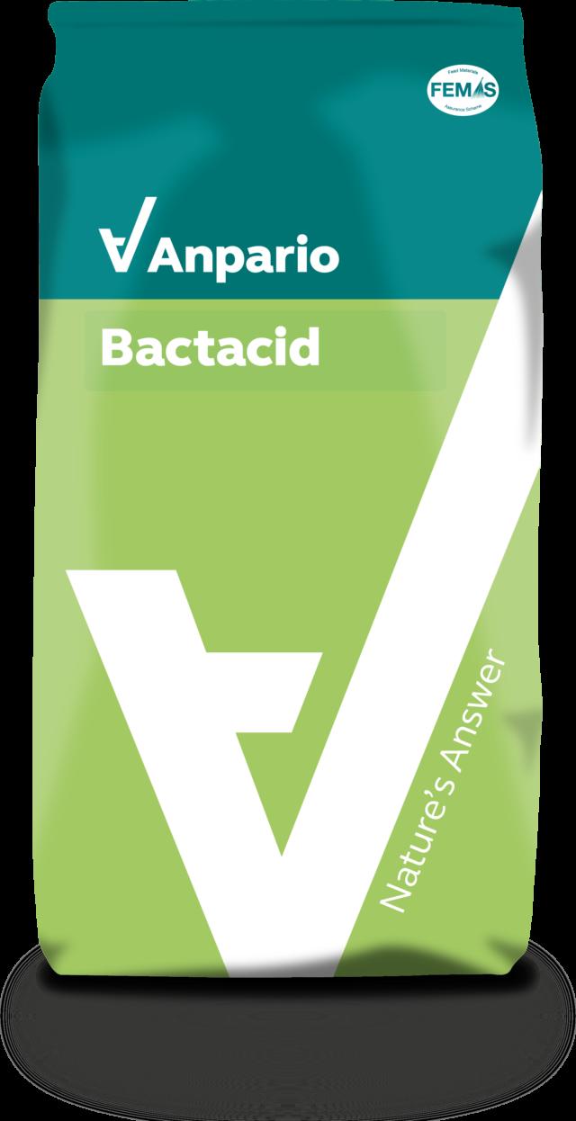 Bactacid