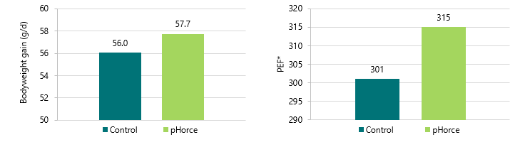 Graphs Detailing Results