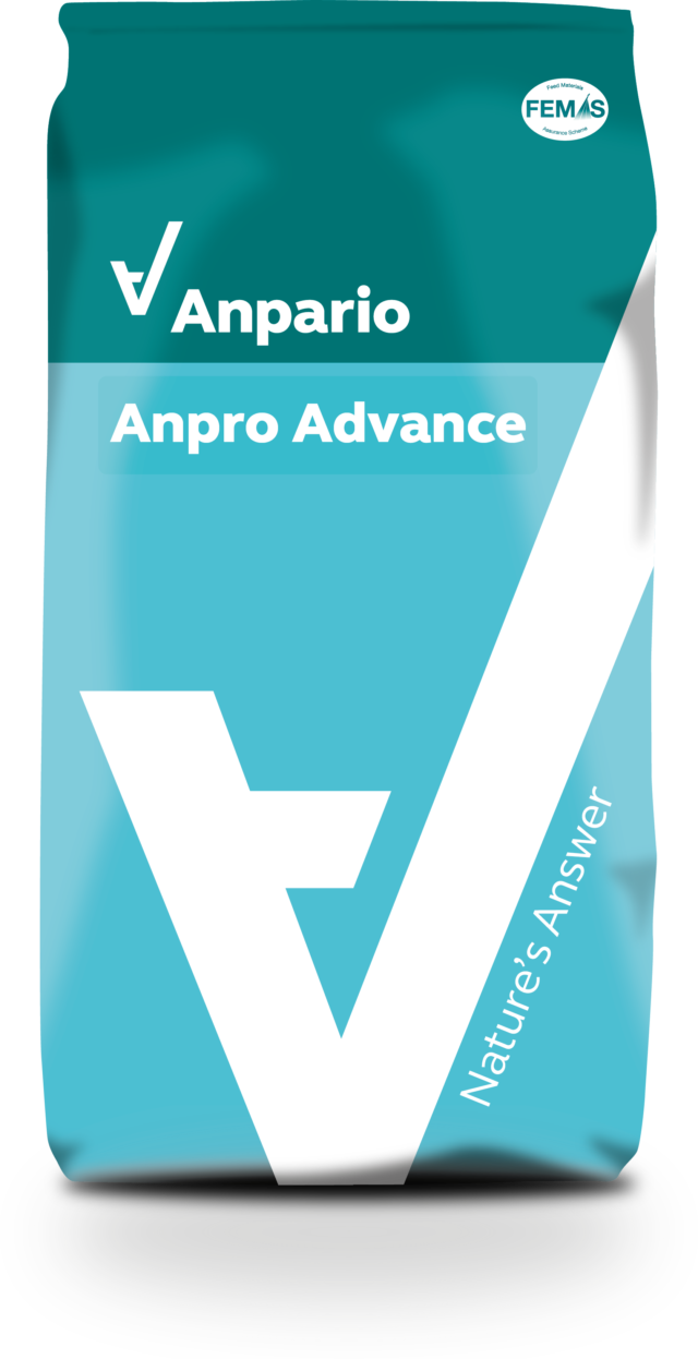 Anpro Advance
