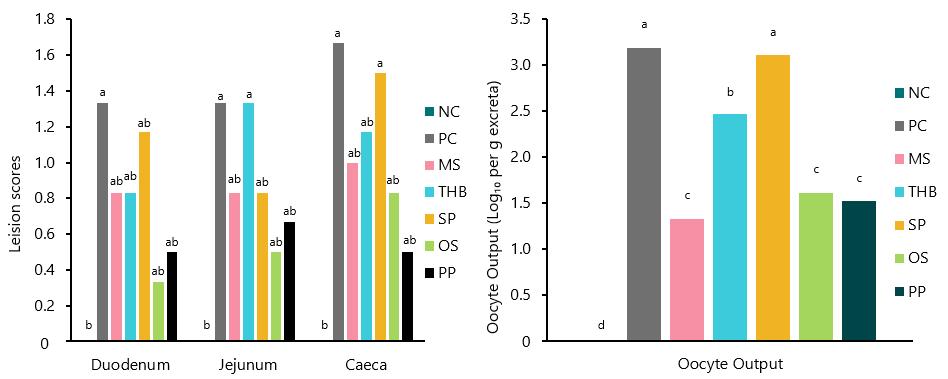 Intestinal leision scores and Eimeria oocyte output at day 30