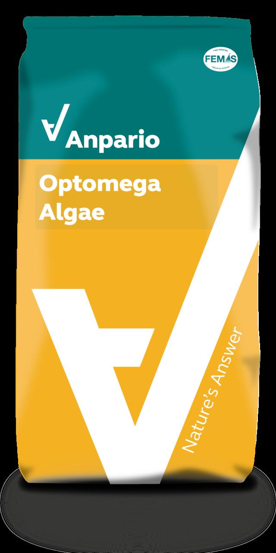 Optomega Algae